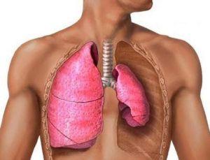 КТ органов грудной полости (легкие, средостение, грудная клетка)ты